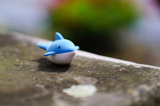 Wal, Dolphin, Water, Toys, Figure, Children Toys, Child