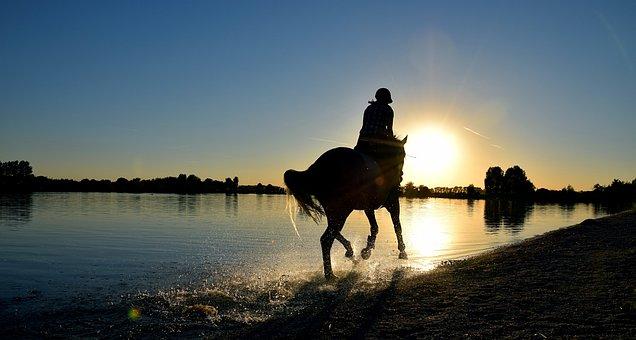Ride, Gallop, Sea, Water, Reiter, Horse