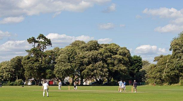 Cricket, Match, Cricket Match, Game, Sport, Fun, Men