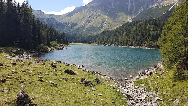 Bergsee, Mountains, Alp, Summer, Forest, Nature, Lake