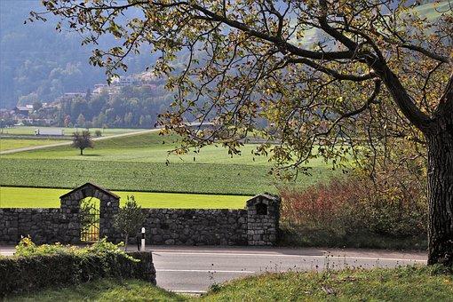Autumn, View, Lake Dusia, Tree, The Vineyards, Fields