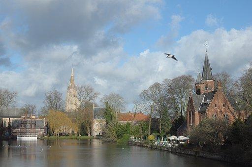 Bruges, Belgium, Lake, Bird