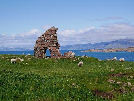 Iona, Scotland, Sheep, Ruin, Sea, Scenic, Celtic