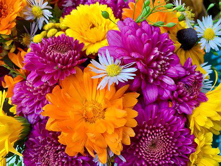 Flower Arrangement, Colorful, Still Life, Cheerful