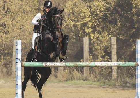 Girl On Horse, Races, Horsewoman, Horse, Sports, Jockey