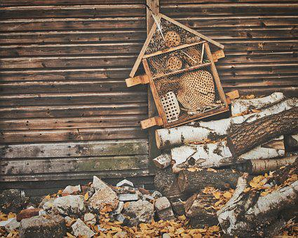 Insect Hotel, Nature Conservation, Insect House
