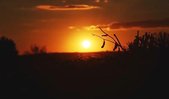 Sunset, Landscape, Clouds, Light, Sky, Orange, Yellow