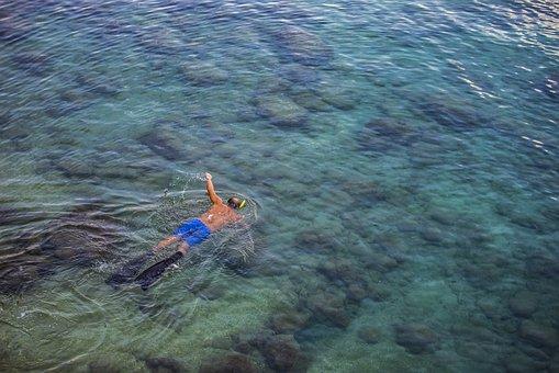 Alanya, Diver, Holiday, Marine, Water