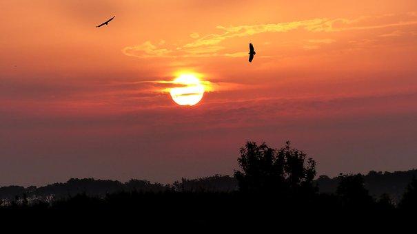 Sunrise, Nature, Landscape, Sky, Morning, Clouds, Color