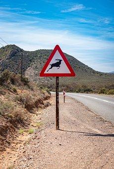 South Africa, Route62, Road, Landscape, Asphalt, Travel