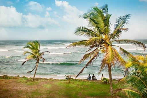 Travel, Ocean, Sri Lanka, Island, Sea, Beach