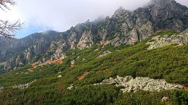 Walkway, Tatry, Mountain, Stones, Nature, Rocks, Autumn
