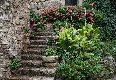 Old House, Staircase, Village, Flower, Wall