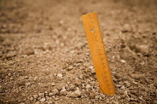 Ruler, Wooden Ruler, Ground, Earth, Field, Cuttling