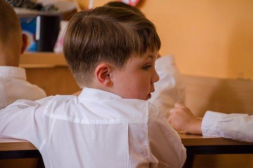 Child, School, Education, Work Desk, Science, Boy
