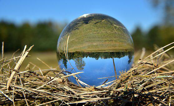 Ball, Glass Ball, Mirroring, Glass, Round, Landscape