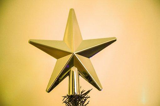 Poinsettia, Christmas, Christmas Tree, Advent