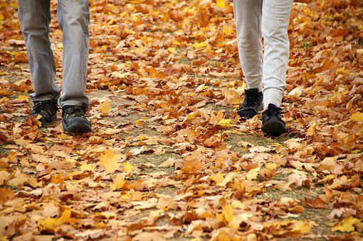 Autumn, Path, The Trail, Field, Alley, Trees, Fallen