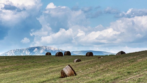Valensole, Beautiful Landscape, Scenic, Panorama