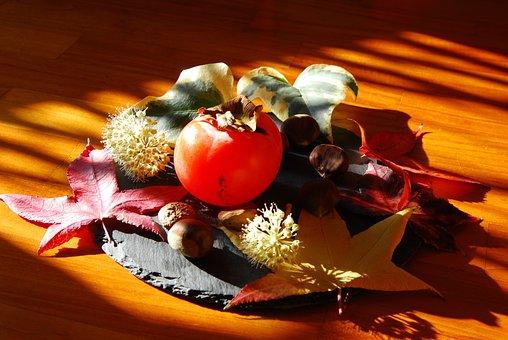 Autumn, Khaki, Chestnuts, Nature, Fruit, Composition