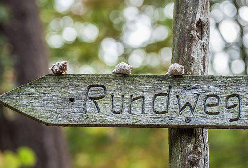 Flatly, Snails, Wooden Sign, Wood Pile, Path Direction