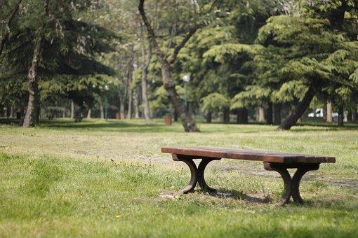 Botanical, Park, Garden, Summer, Nature, Color