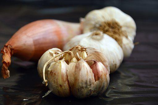 Garlic, Onion, Vegetables, Food, Ingredients, Nutrition
