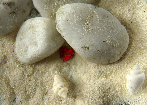 Heart, Stones, Shell, Greeting Card