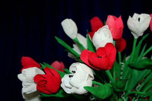 Flowers, Paper Flowers, White - Red, Independence