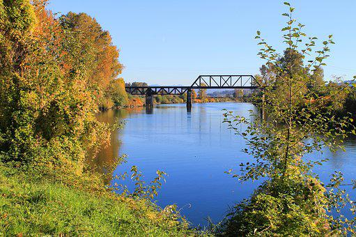 Trees, Autumn, Fall, Color, Yellow, Orange, River