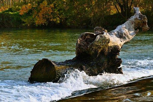 Water, Stump, Waterfall, Nature