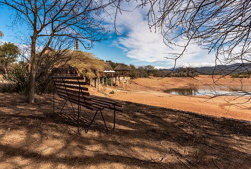 South Africa, Lodge, Safari, Scenic, Water Hole, Tree