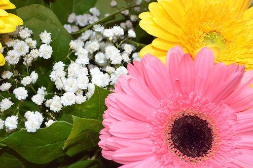 Flowers, Bouquet, Arrangement