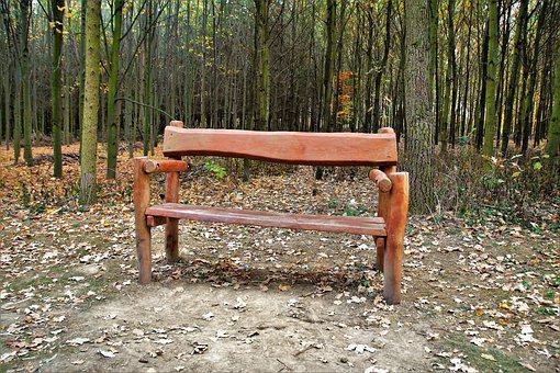 Bench, Wooden, Lone, Forest, Autumn, Sit, Rest