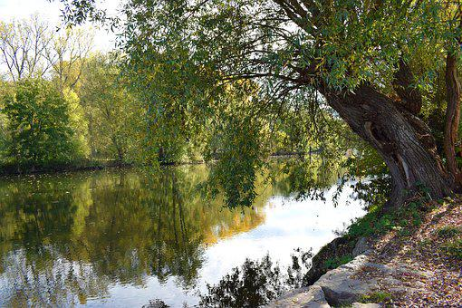 Nature, River, Bank, Landscape, Water