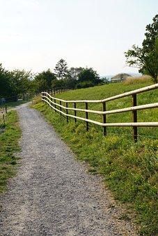Away, Road, Field, Fence