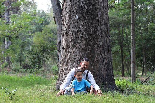 Child, Tree, Nature, Forest, Man, Mexican, Latino