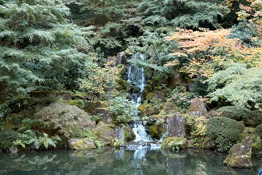 Waterfall, Green, Nature, Landscape, Water, Moss