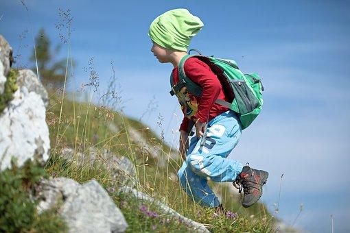 Hiking, Nature, Landscape, Forest, Adventure, Trail