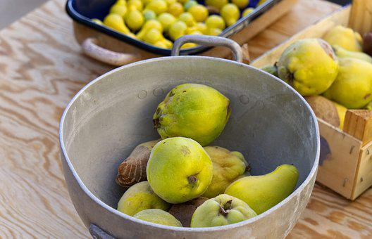 Quince, Fruit, Yellow, Tree, Nature, Harvested