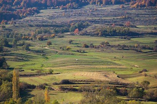Transylvania, Romania, Harghita, Tourism, Shepherd
