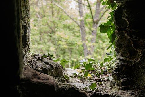 Moss, Stone, Ruin, Castle