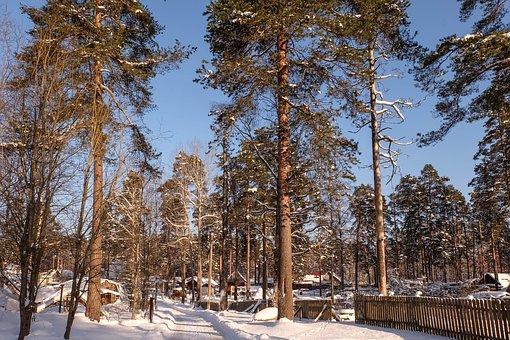 Winter, Michurinskiy, Beauty, Snow, Russia