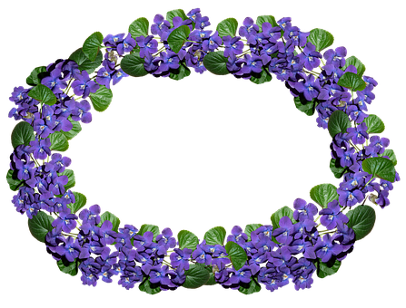 Flowers, Violets, Arrangement, Frame, Border, Perfume