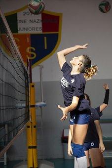 Sport, Volley, Volleyball, Athlete, Team