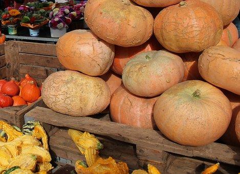 Vegetables, Pumpkin, Autumn, Halloween, Food, Harvest
