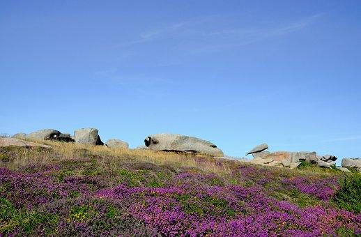 Perros-guirec, Pink Granite, Britain, Beach, Rock