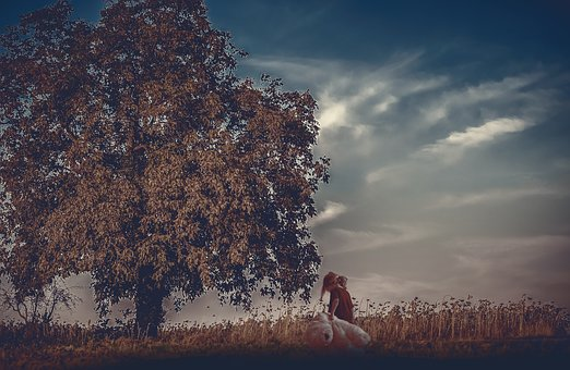 Kid, Child, Playing, Tree, Childhood, Boy, Young