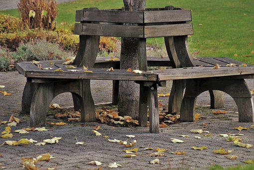 Bench, Foliage, Autumn, Park, In The Fall, Seat