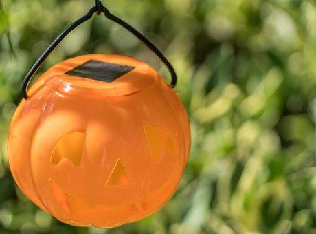 Halloween, Decoration, Closeup, Bokeh, Autumn, Pumpkins